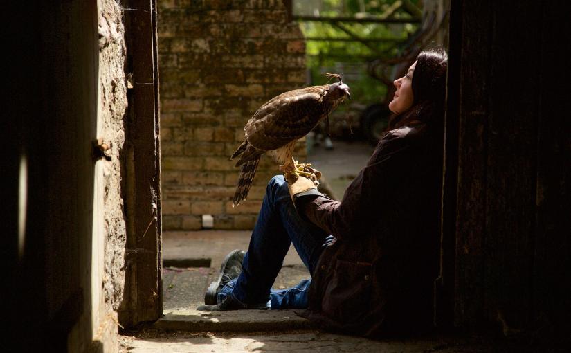 H de halcón, de HelenMacdonald
